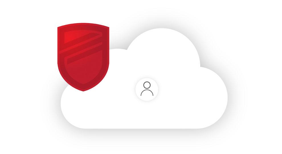 customer data safe in the cloud